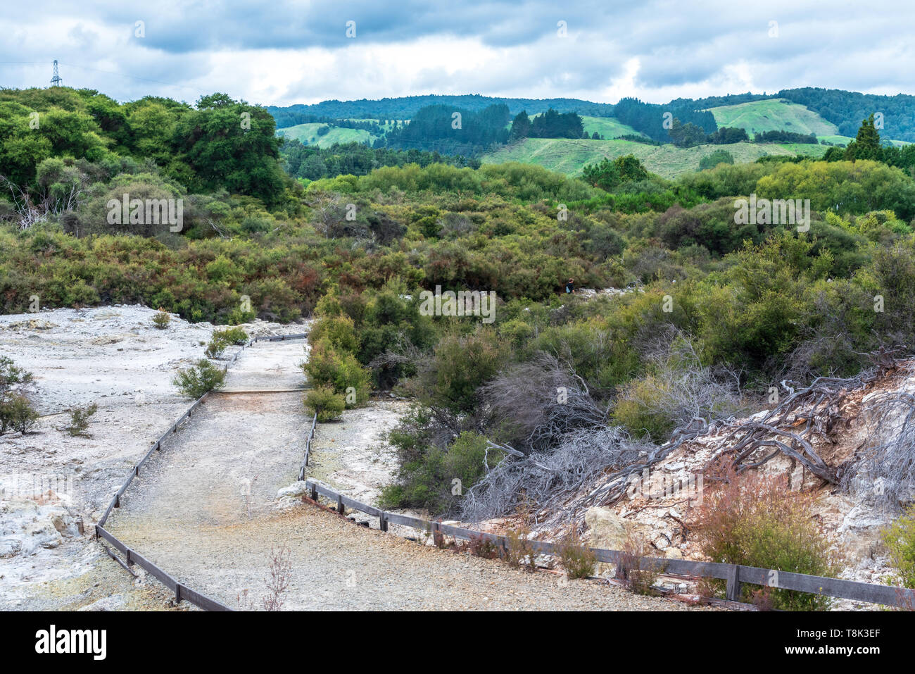 Landscape photo from Hell's Gate in New Zealand overlooking the surrounding countryside. - Stock Image