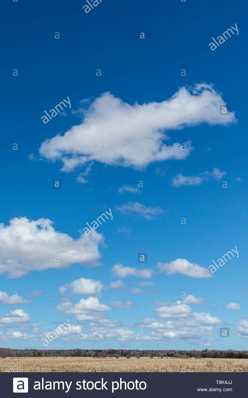 Cumulus humilis fair weather clouds in a blue sky - Stock Image