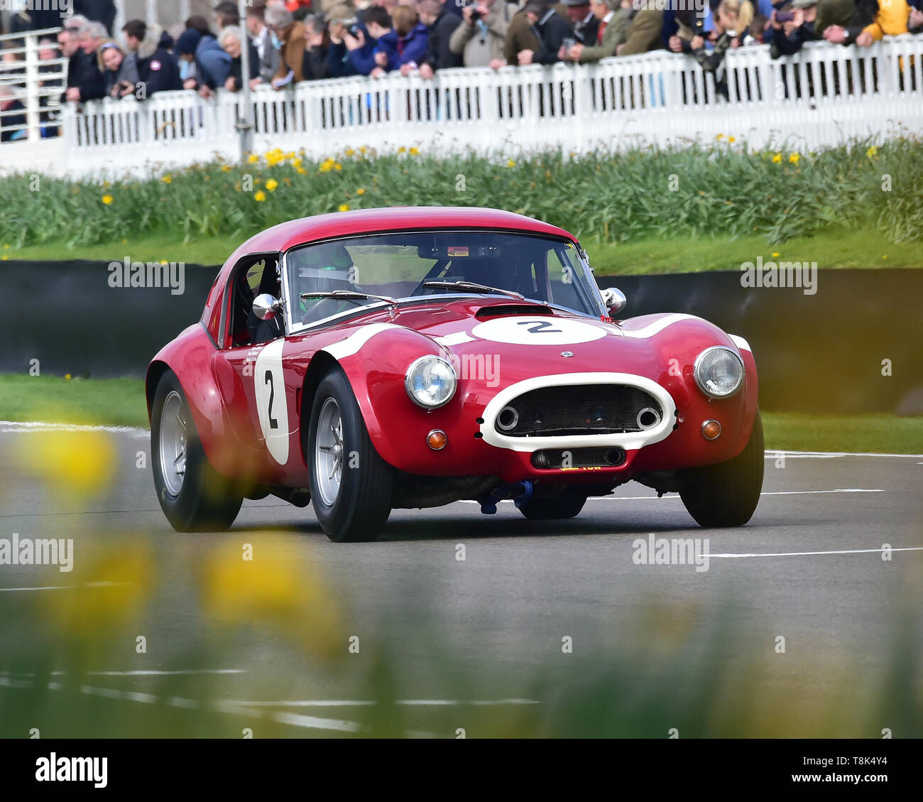 Martin Stretton, Michael Hinderer, AC Cobra, Graham Hill Trophy, Closed cockpit GT cars, Prototype cars, Spirit of the RAC TT Races 1960-1964, 77th Me Stock Photo