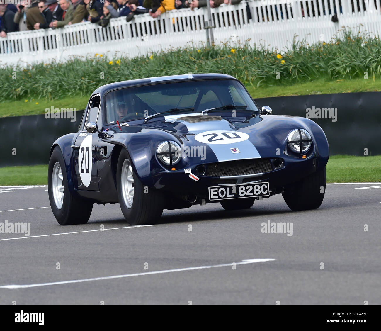 John Spiers, Tiff Needell, TVR Griffith, Graham Hill Trophy, Closed cockpit GT cars, Prototype cars, Spirit of the RAC TT Races 1960-1964, 77th Member - Stock Image