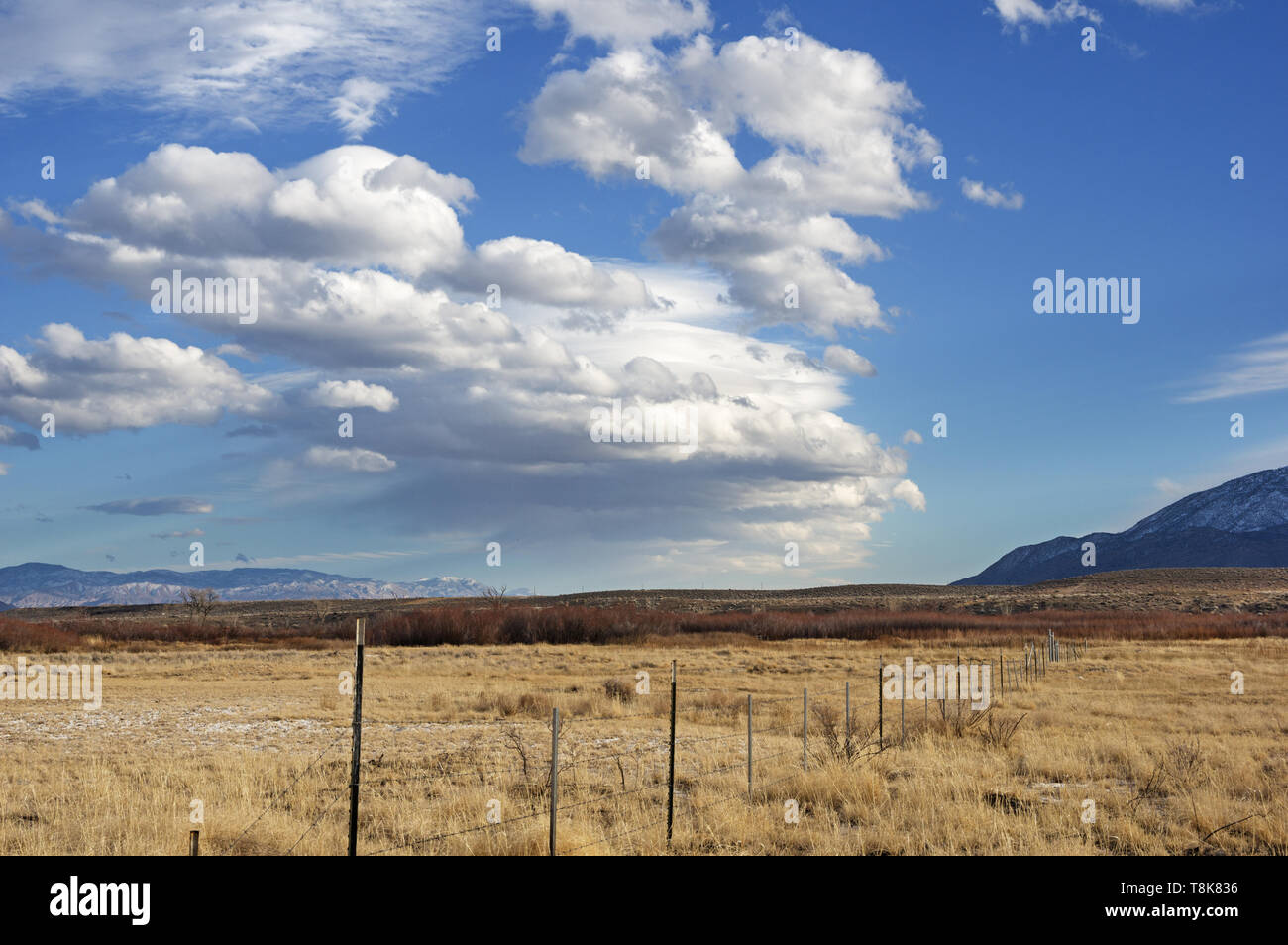 barbed wire fence and wave cloud forming over the Owens Valley near Bishop California - Stock Image