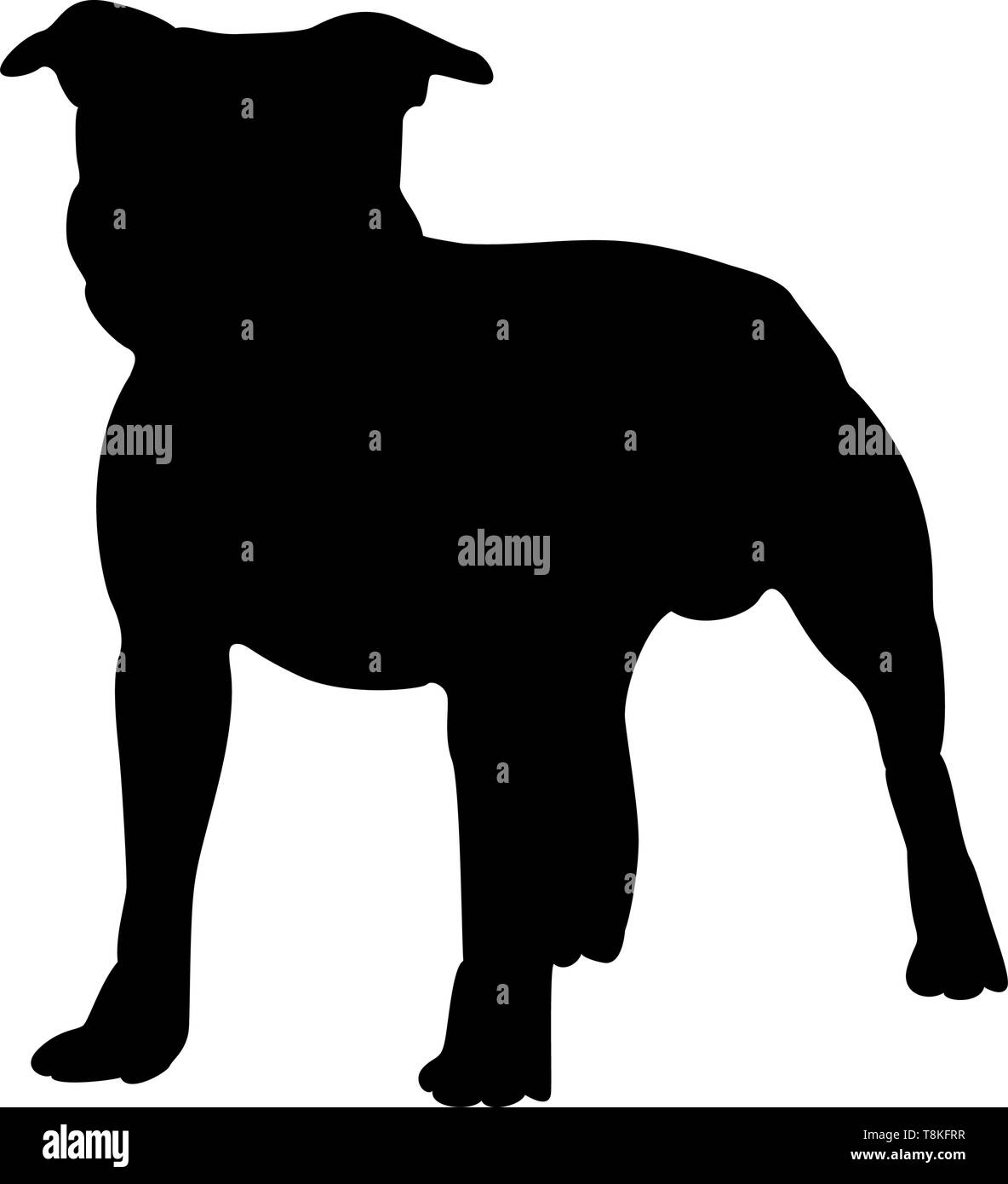 Staffordshire Terrier Dog Silhouette. Smooth Vector Illustration. - Stock Image
