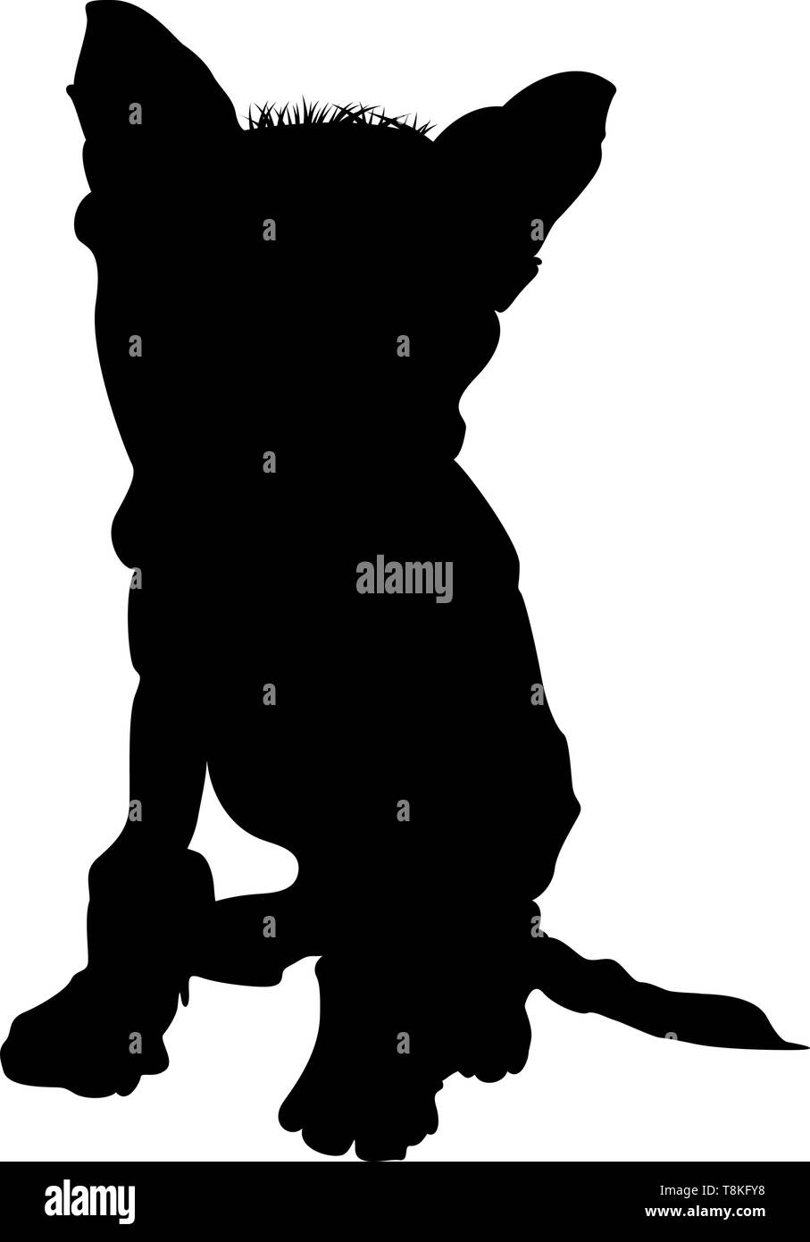 Chinese Crested Dog Silhouette. Smooth Vector Illustration. Stock Vector