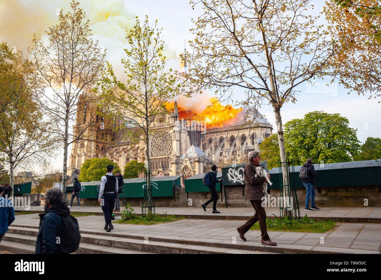 France, Paris, area listed as World Heritage by UNESCO, Notre Dame de Paris Cathedral, fire which ravaged the cathedral on April 15, 2019 - Stock Image