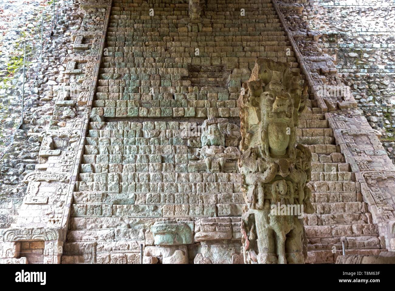 Hieroglyphic Stairway, a Staircase Full of Ancient Mayan Civilization Text in World Famous Archeological Site Copan Ruins (Copan Ruinas) in Honduras - Stock Image