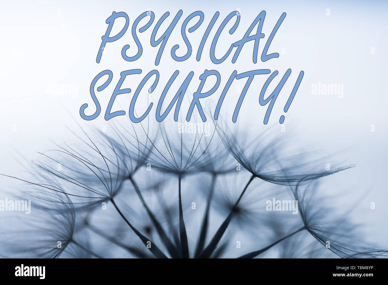 Handwriting text writing Physical Security. Conceptual photo designed to deny unauthorized access to facilities - Stock Image