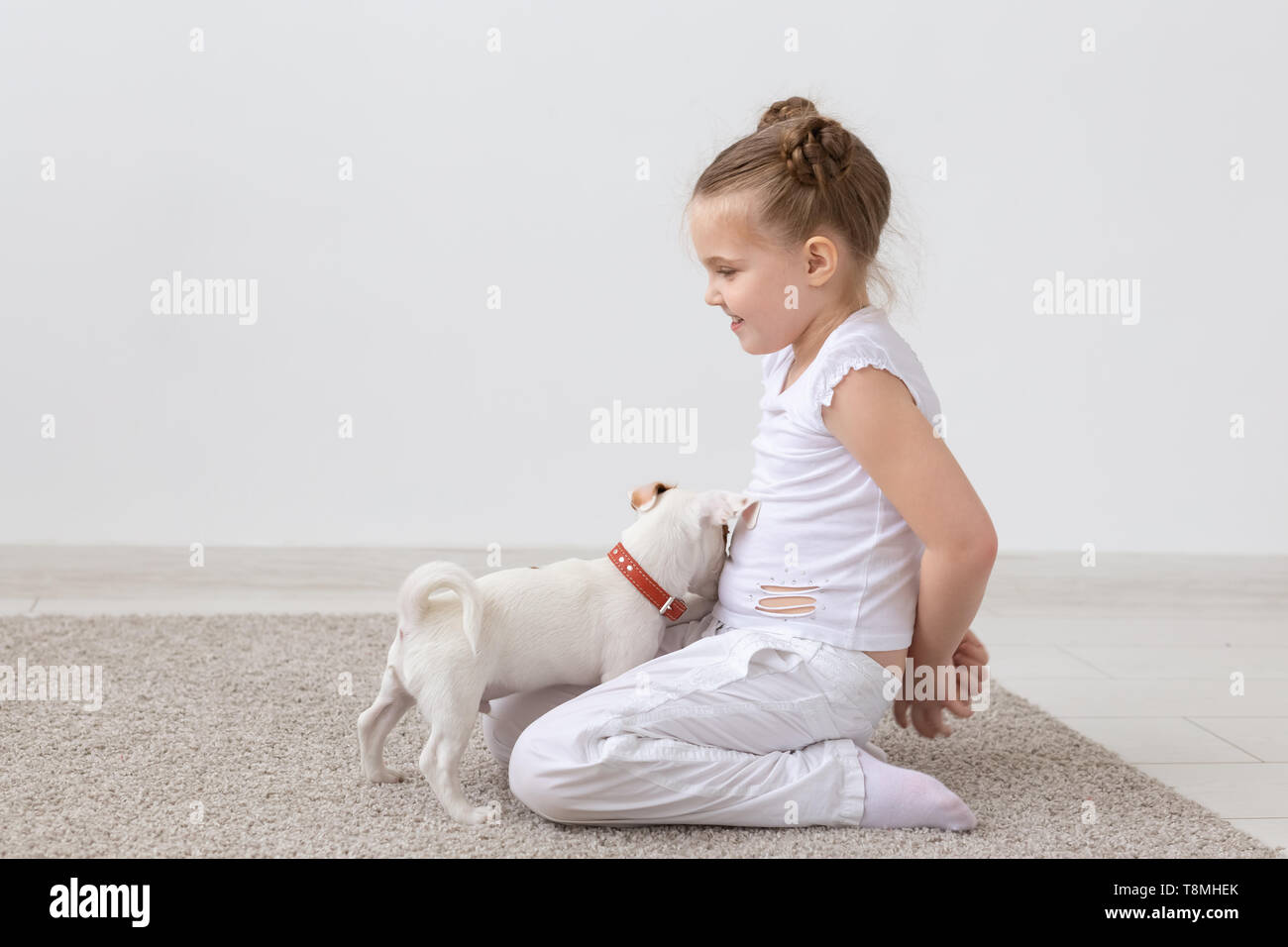 Pet, children and animal concept - child girl sitting on the floor and feeding puppy - Stock Image