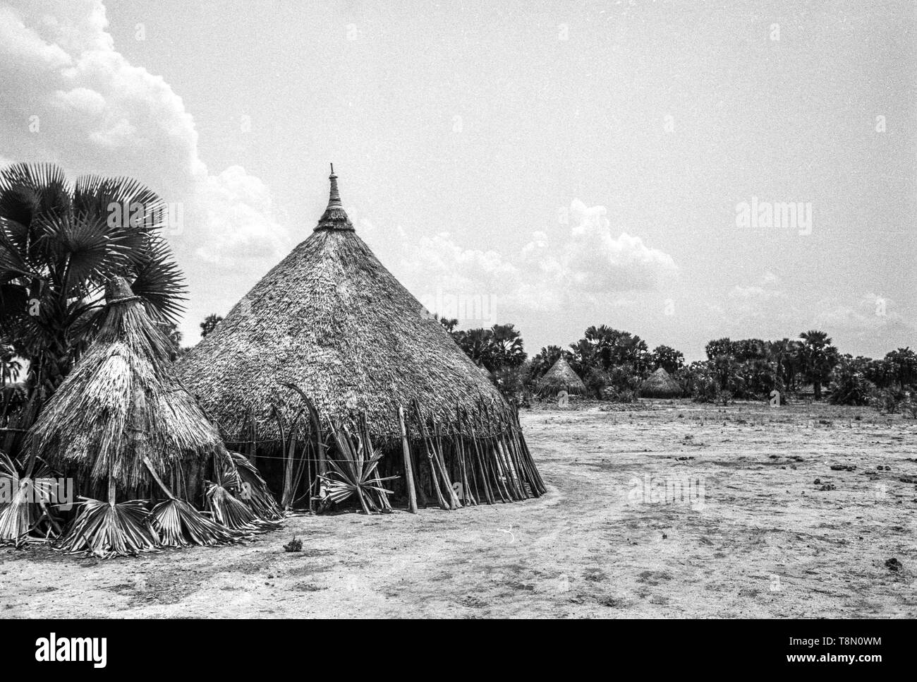Neur Tribe with their smooth thatched huts - Stock Image