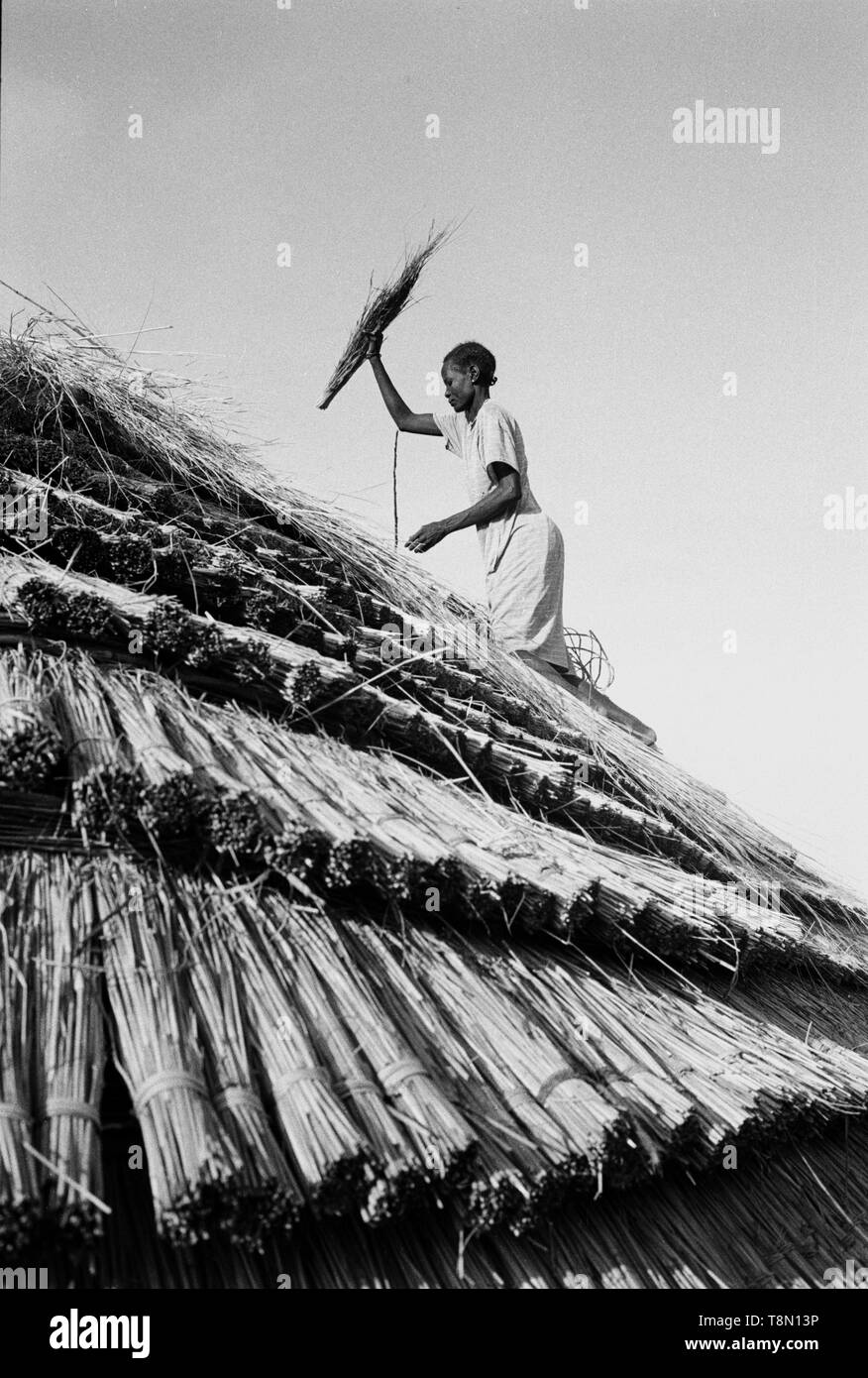 roof thatching are done by women, the rings of ridges are custom to the Dinka Tribe. - Stock Image