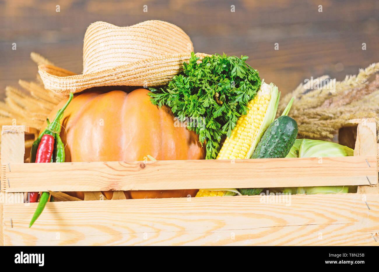 Buy fresh homegrown vegetables  Box or basket harvest
