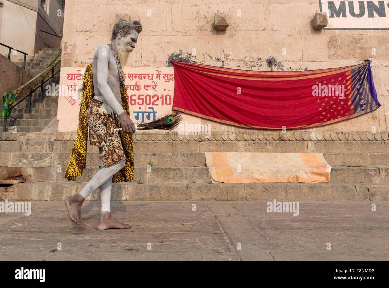 Sadhu (holy man) covered in ashes walks along the ghats of the River Ganges, Vranasi, India - Stock Image