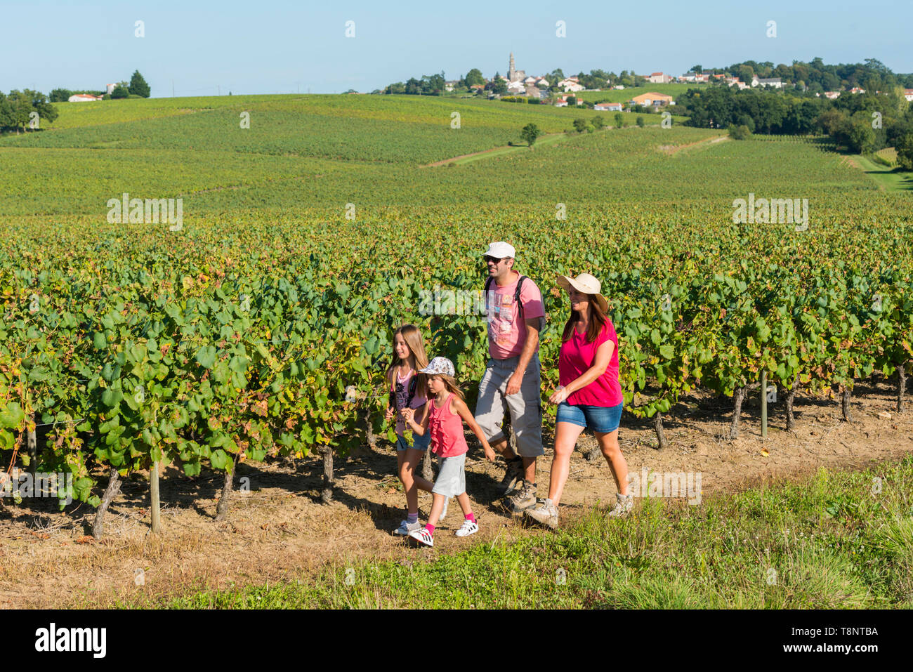 Family having a walk through vineyards in Saint-Fiacre-sur-Maine Couple, parents with their two daughters walking on a path in the countryside - Stock Image