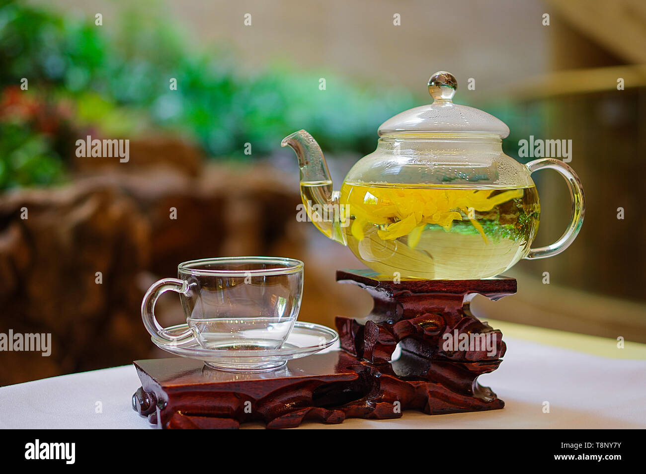 Traditional Chinese chrysanthemum tea in glass teapot on wooden plate - Stock Image