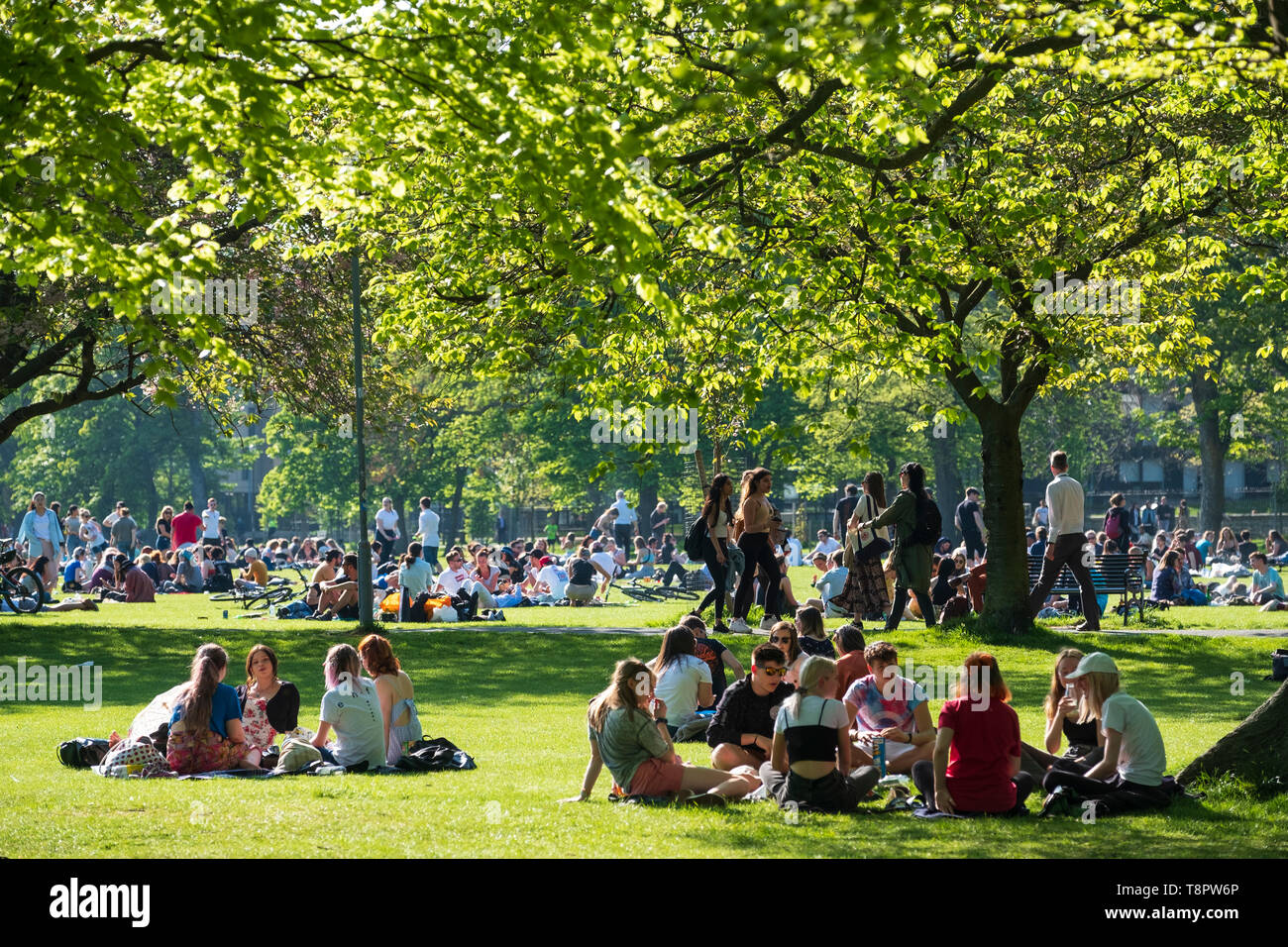 Edinburgh, Scotland, UK. 14 May 2019. Warm sunny weather in the capital brought hundreds of people to The Meadows park in the afternoon to enjoy the sun. The park is adjacent to Edinburgh University and it seemed that most of the crowd were students taking a break from studying for upcoming exams Credit: Iain Masterton/Alamy Live News Stock Photo