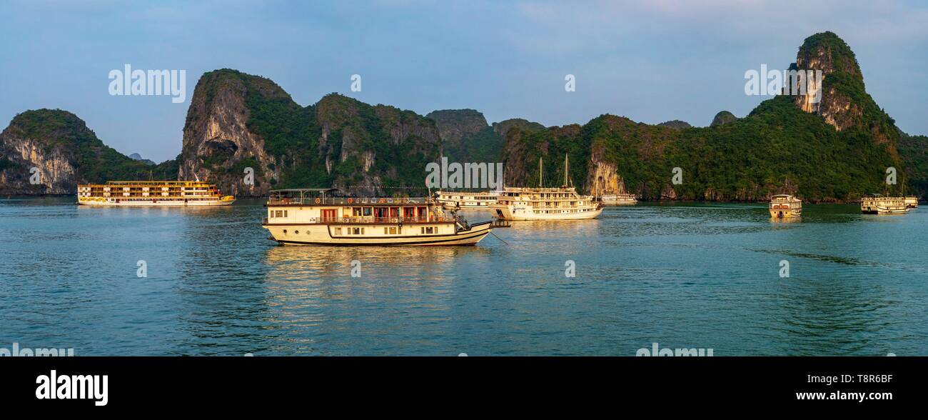 Vietnam, Gulf of Tonkin, Quang Ninh province, Ha Long Bay (Vinh Ha Long) listed as World Heritage by UNESCO (1994), iconic landscape of karst landforms, cruise ships Stock Photo