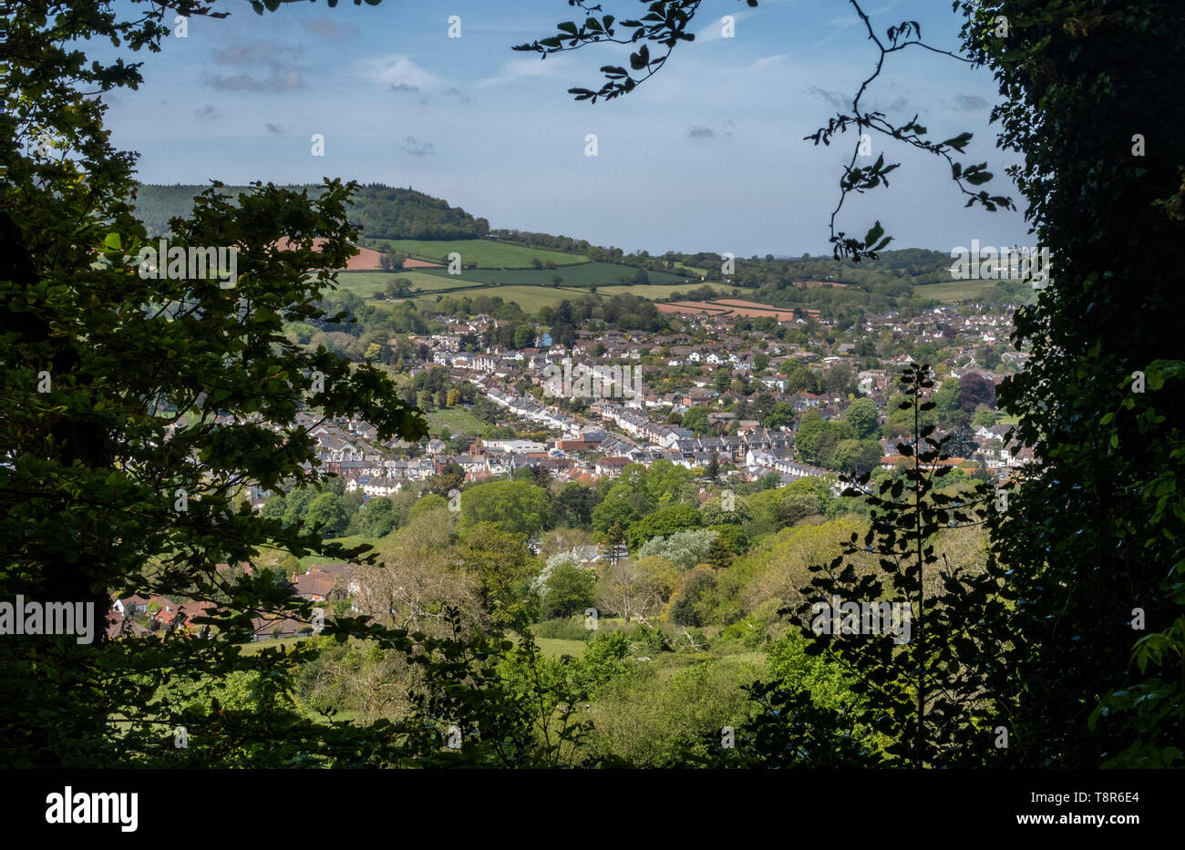 View looking across Sidmouth from Page Wood, on Soldiers Hill, to the east of the Devon town. Stock Photo