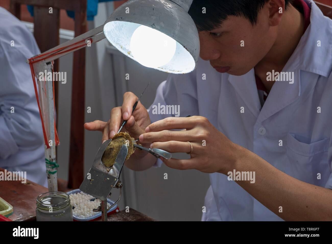 Vietnam, Gulf of Tonkin, Quang Ninh province, Ha Long Bay (Vinh Ha Long), Akoya, Tahitian and Southsea cultured pearls Stock Photo