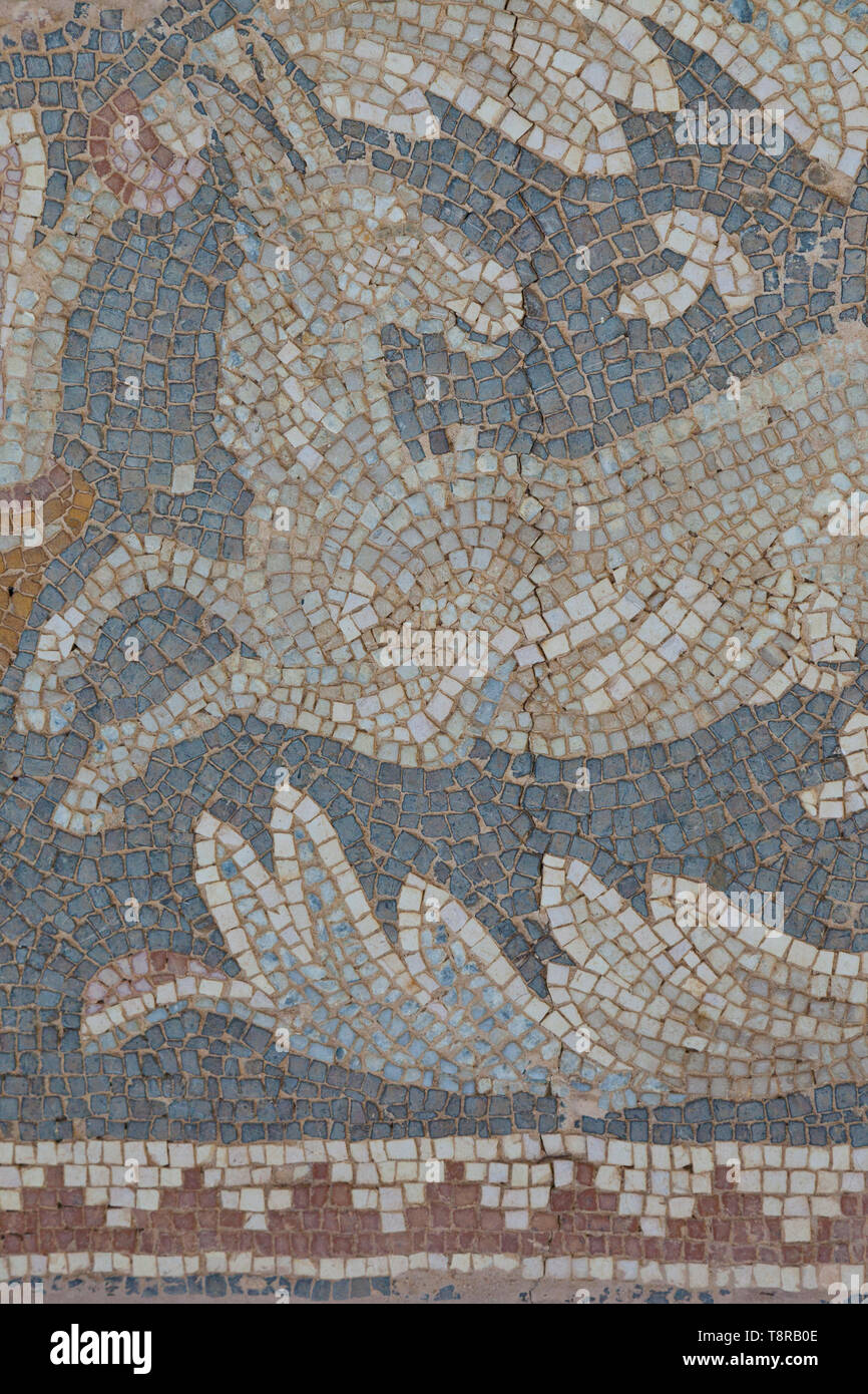 Mosaico. Ciudad grecorromana Jerash, Jordania, Oriente Medio Stock Photo