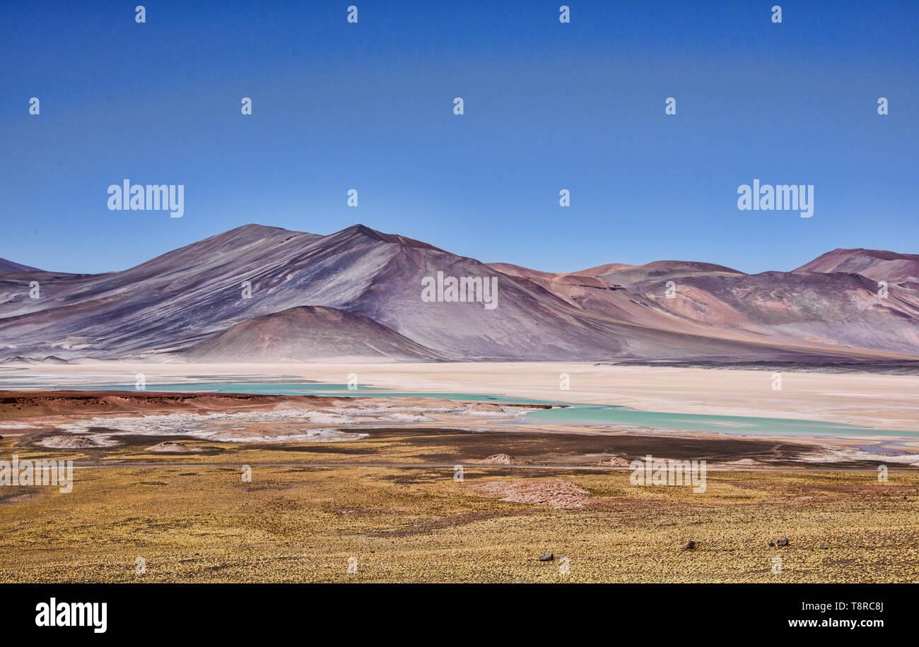 Surreal landscape at the Salar Aguas Calientes, Atacama Desert, Chile Stock Photo