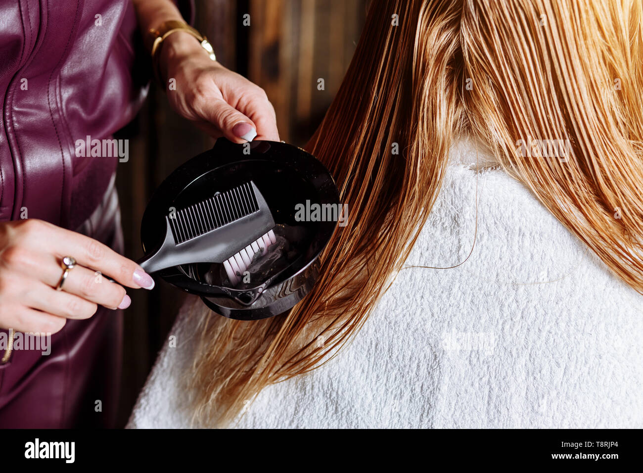 Professional hairdresser brushing wet hair of beautiful young blond woman before dyeing hair. Hair care products, health and beauty. Closeup photo of  - Stock Image