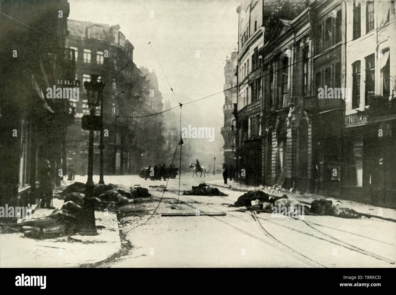 """'A Street in Lille', (1919). Dead horses in a street, scene from the First World War, 1914-1919: 'Photograph taken shortly after one of the battles in the manufacturing town of Lille [in northern France], engagements which were desperate in their intensity. The Germans occupied the town on August 21, and for months it became the object of bombardment and attack by the French and their endeavour to drive them out.' From """"The History of the Great European War: its causes and effects"""", Vol. III, by W. Stanley Macbean Knight. [Caxton Pulishing Company, Limited, London, 1919] - Stock Image"""