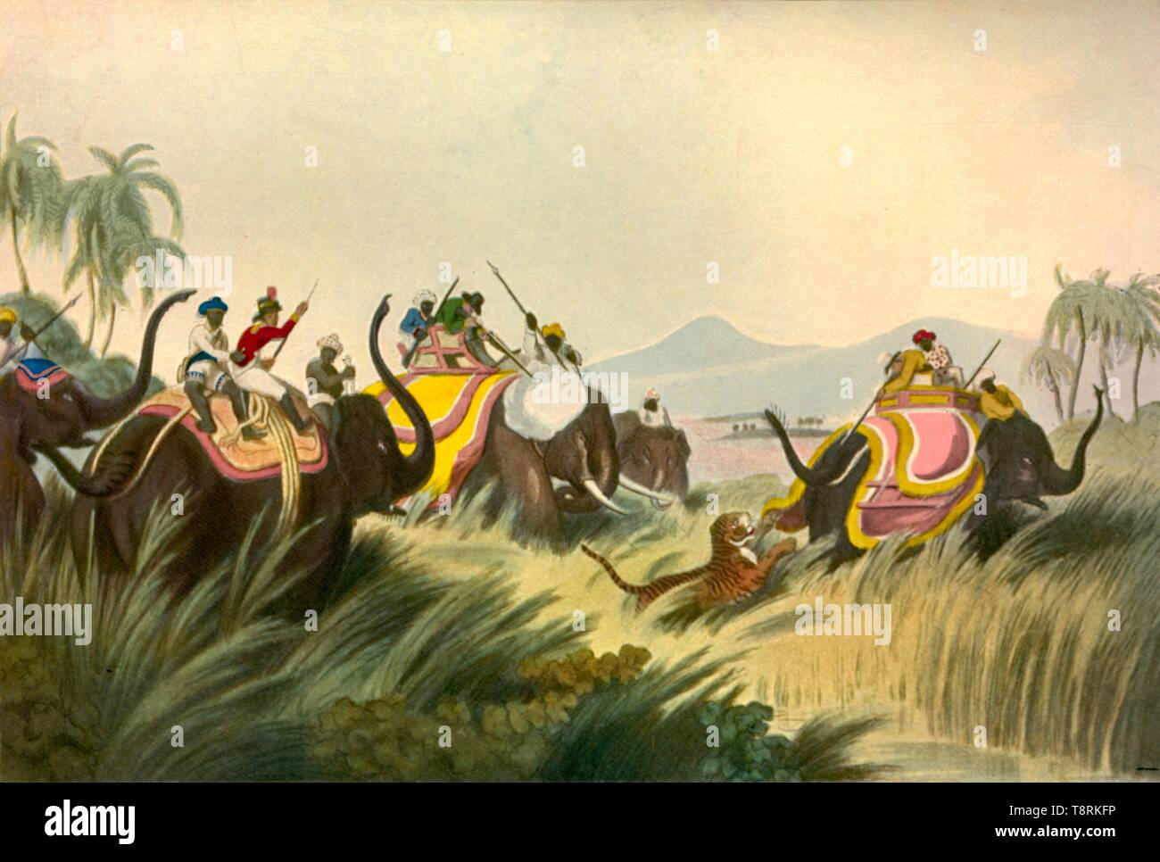 'The Tiger Hunt', c1808, (1901). Creator: Unknown. - Stock Image