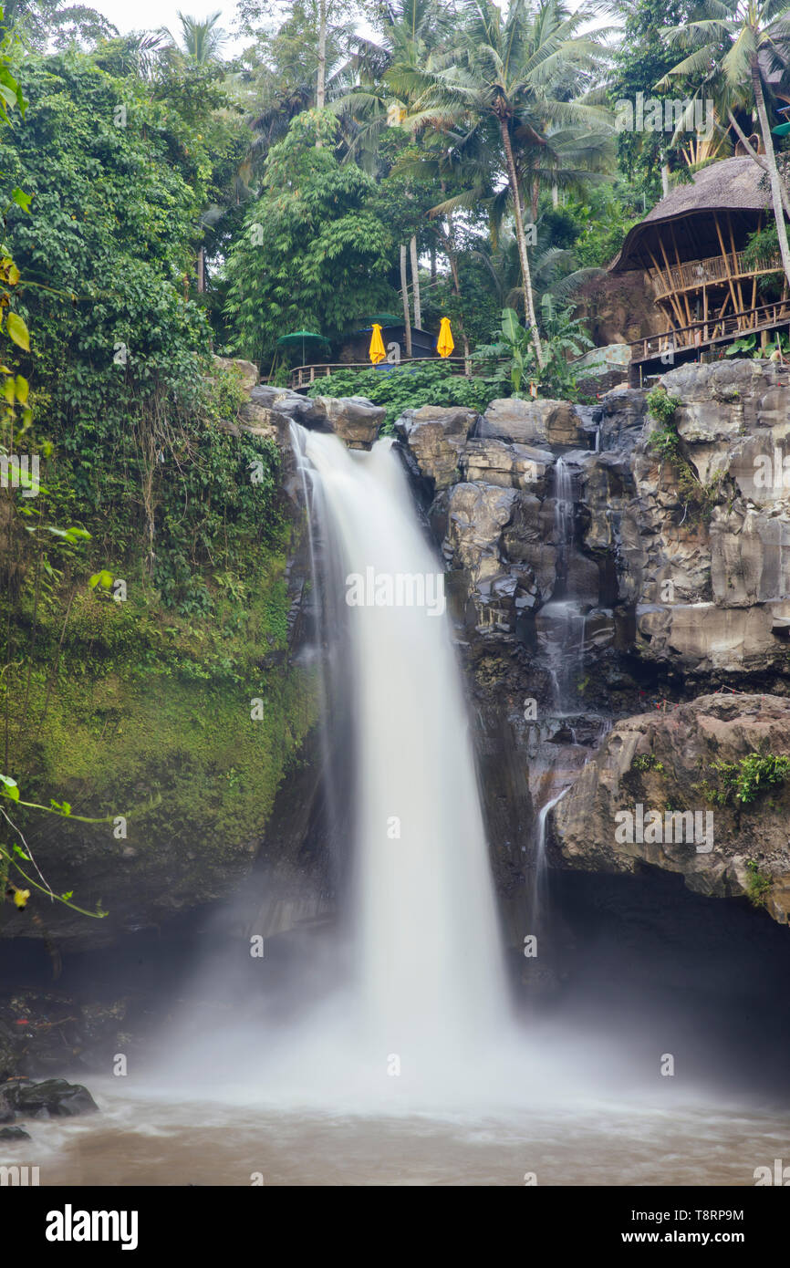 View at amazing Tegenungan waterfall near Ubud in Bali, Indonesia - Stock Image