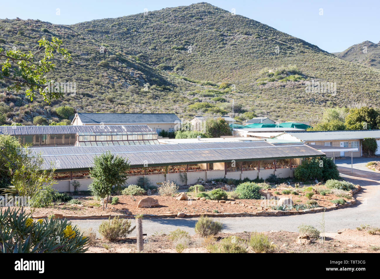 Herbarium at Karoo Desert National Botanical Garden, Worcester, Western Cape housing the Index Collection with over 3900 taxa of Southern African plan - Stock Image