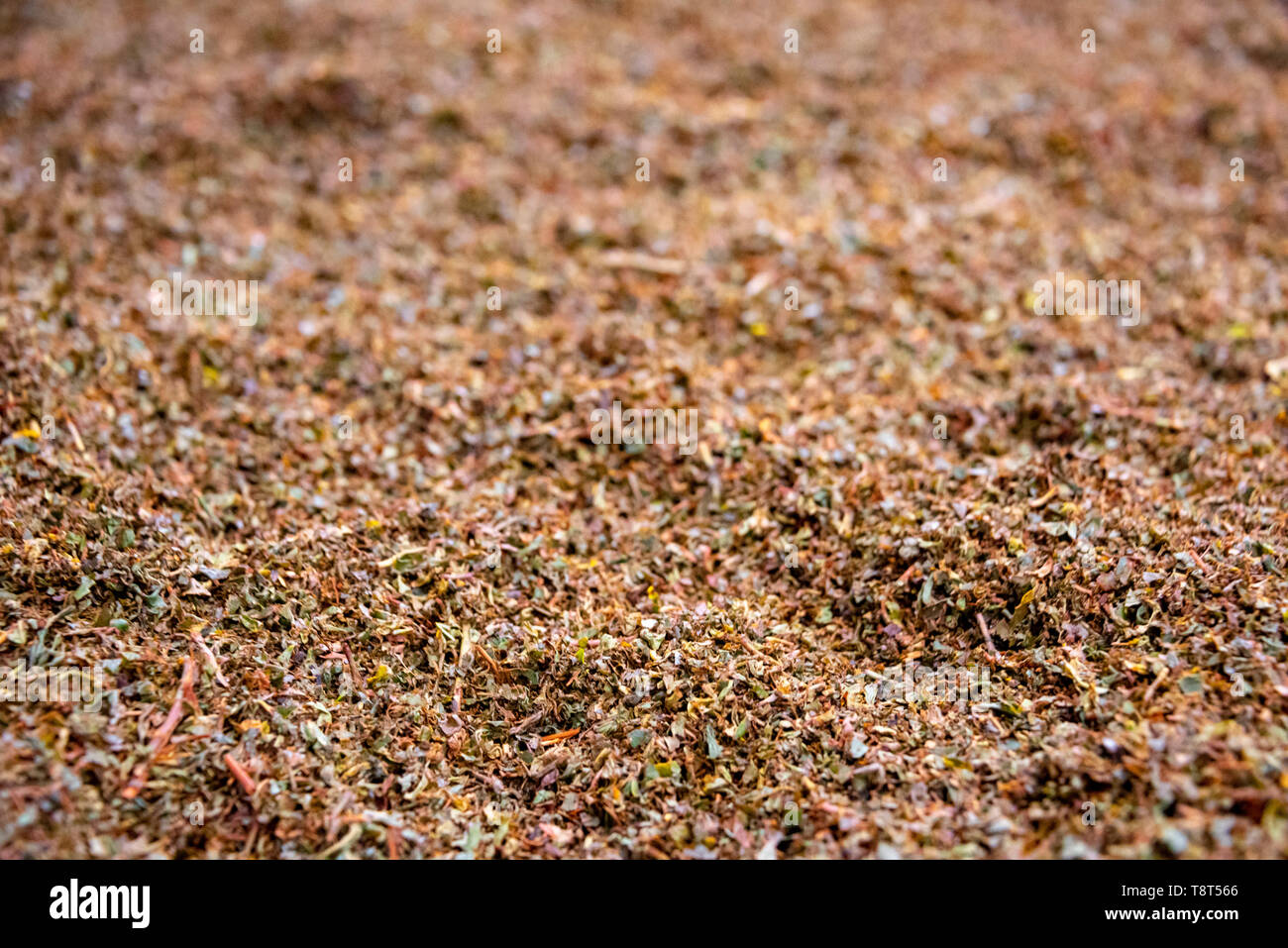 Horizontal close up of loose tea at the end of the production line at a tea factory in Munnar, India. - Stock Image