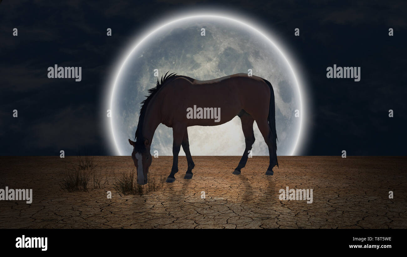 Surrealism. Horse grazes in arid land. Giant moon at the horizon - Stock Image