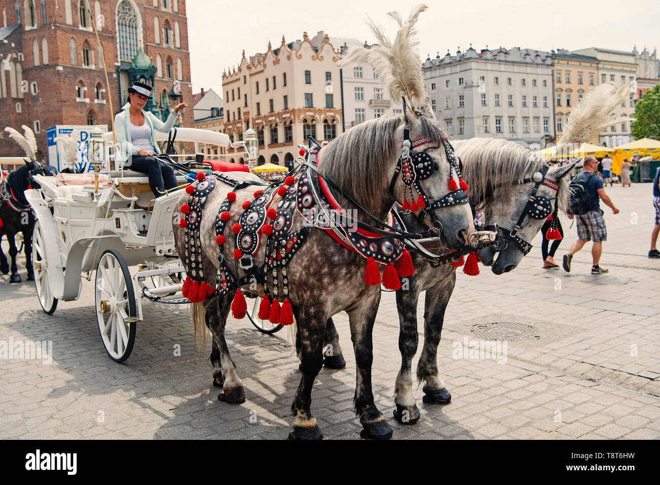 Krakow, Poland - June 04, 2016: woman rider invite to horse and carriage tour in city square. Vacation, travelling, discovery concept. - Stock Image