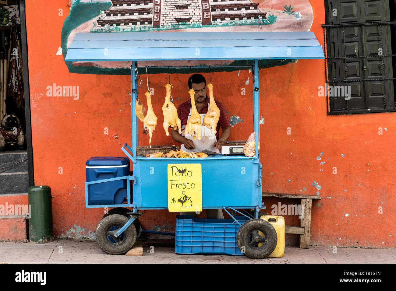 A Mexican food vendor sells fresh chickens outside the central Market in Papantla, Veracruz, Mexico. Stock Photo