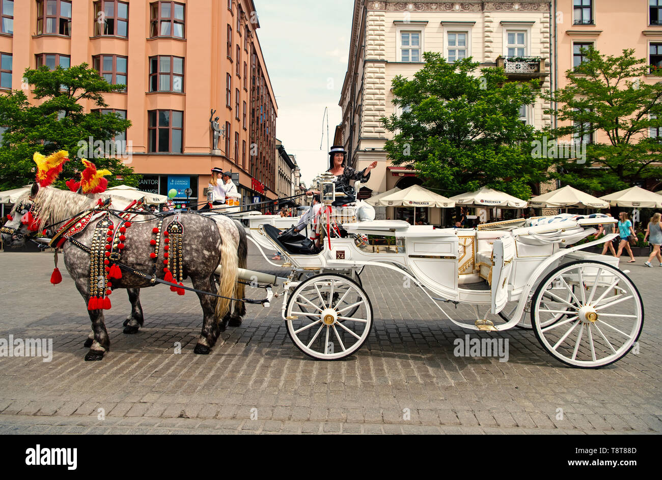 Krakow, Poland - June 04, 2016: rider woman invite tourists to horse carriage ride on city street on urban background. Vacation, tour, travelling, discovery concept. - Stock Image