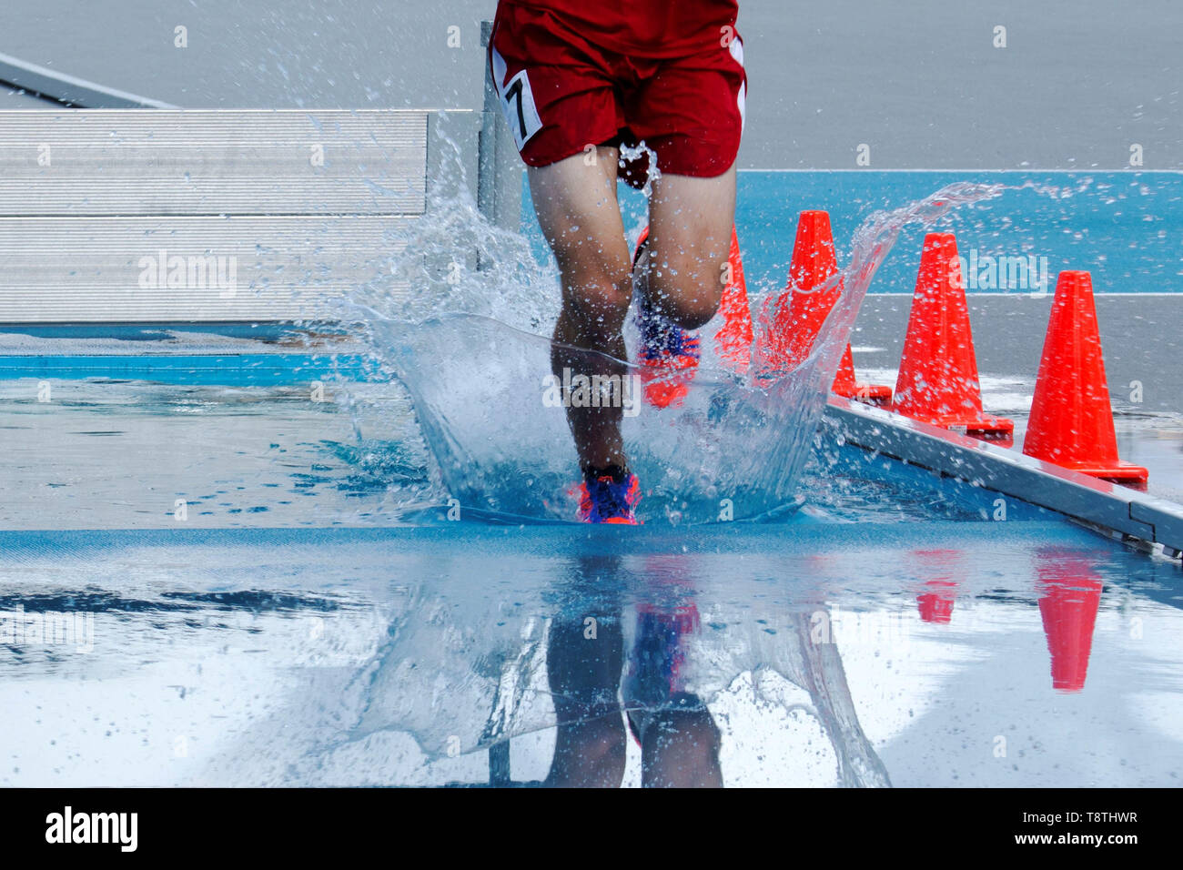 Landing and splashing in water while racing in the steeplechase Stock Photo