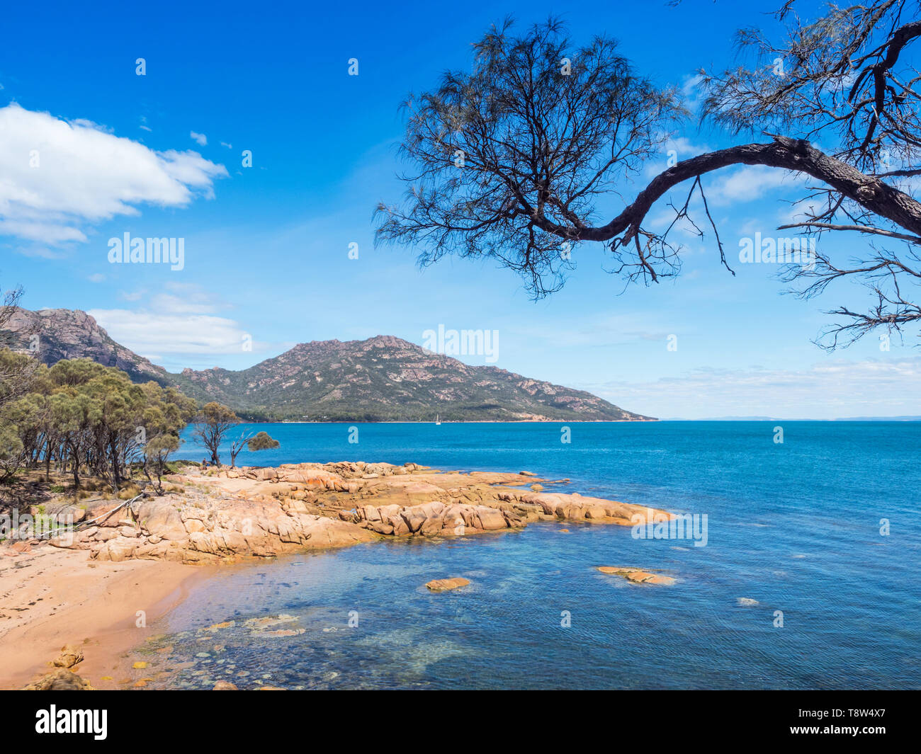 A beach at Coles Bay, adjacent to Freycinet National Park in Tasmania, Australia. Stock Photo