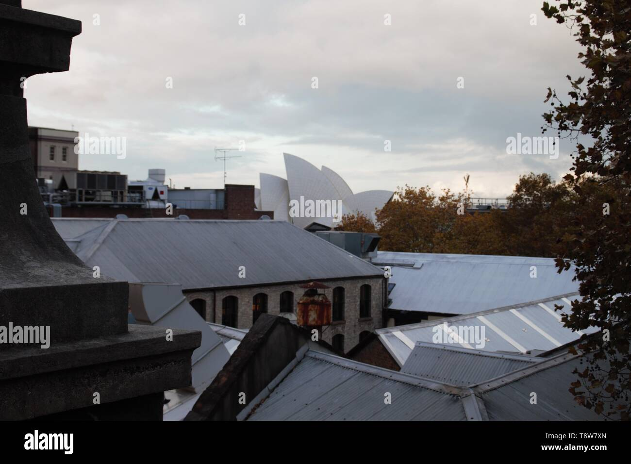 The roof of Sydney opera house at the horizon - Stock Image