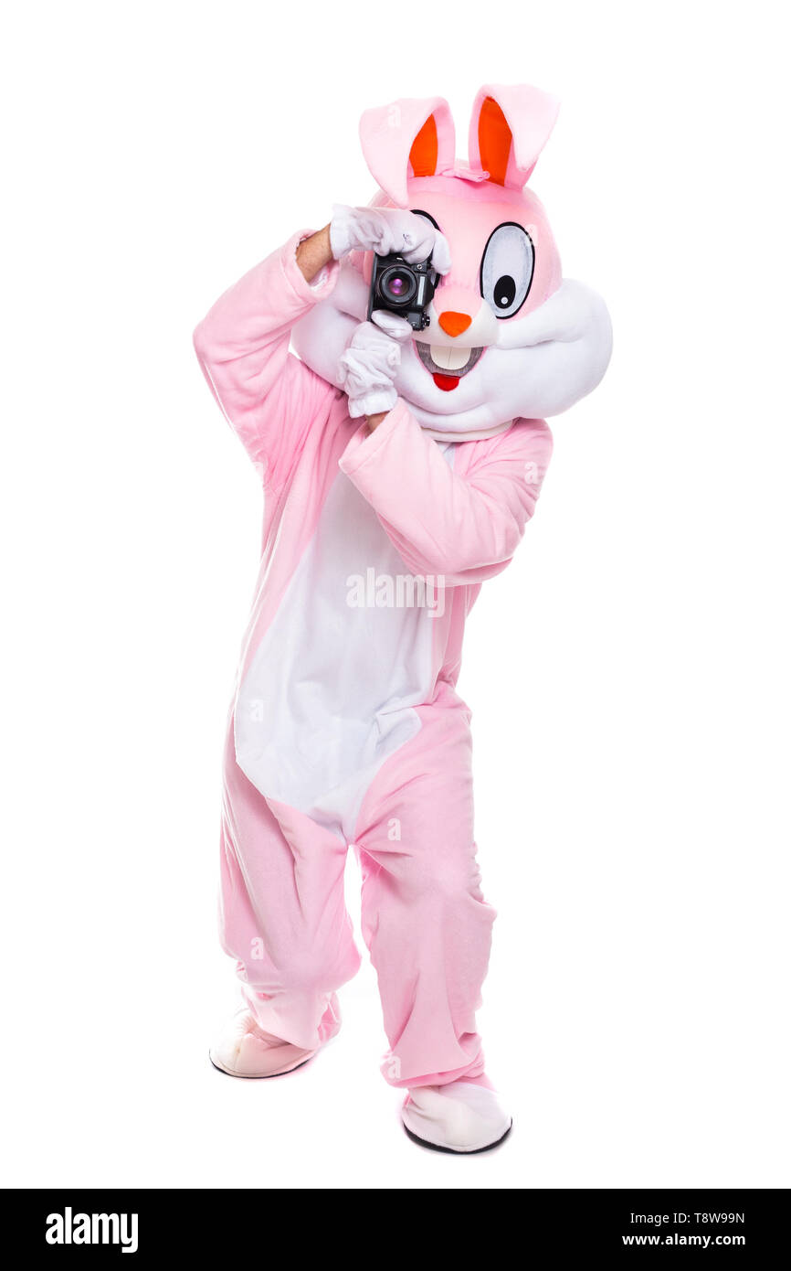 Life size easter bunny or rabbit holds photocamera, takes a pictures. Funny crazy photorapher with camera shoots easter party - Stock Image