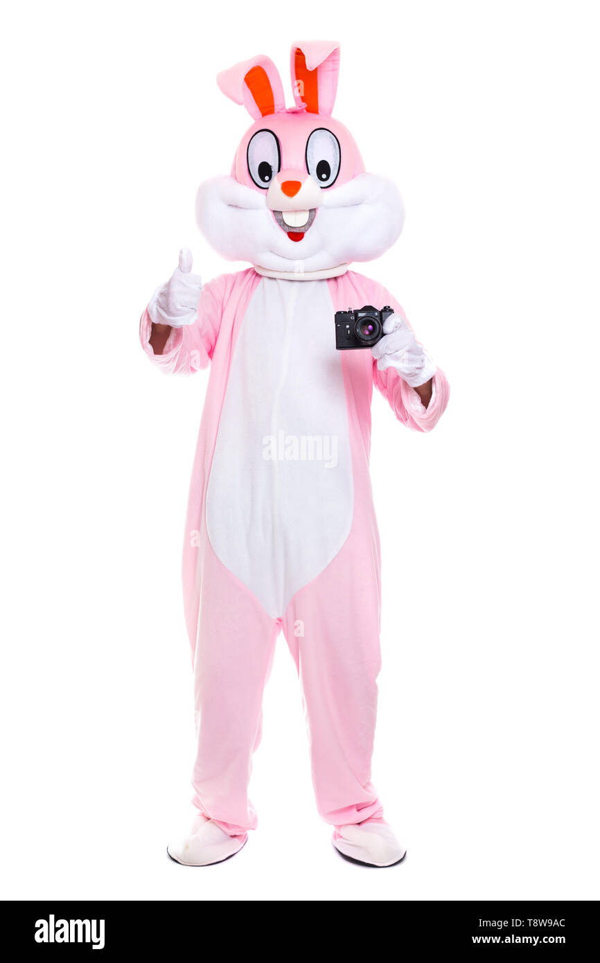 Funny crazy photorapher with camera shoots easter party. Life size easter bunny holds photocamera, takes a pictures on white background - Stock Image