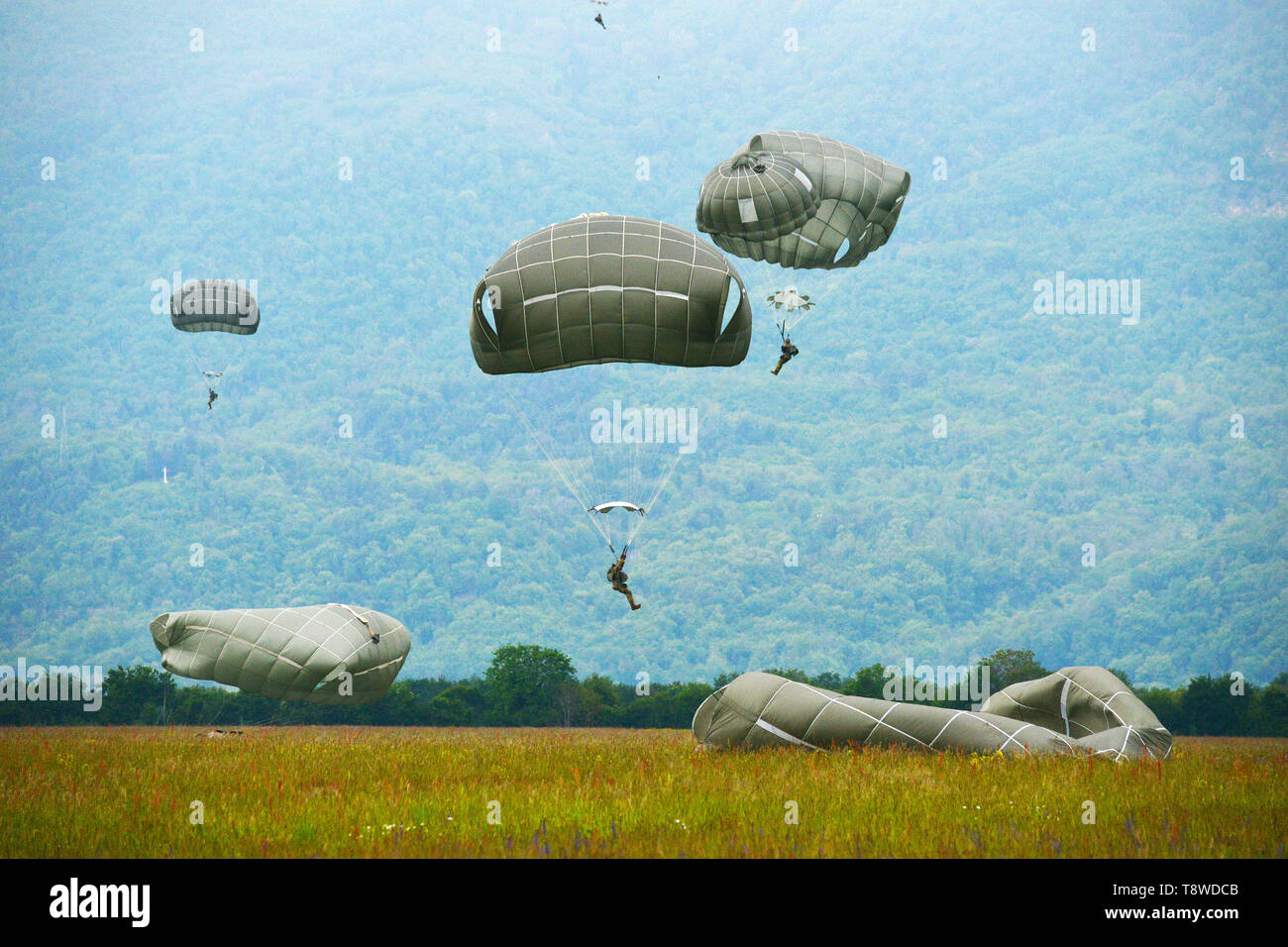 U.S. Army Paratroopers assigned to 54th Brigade Engineer Battalion, 173rd Airborne Brigade, descends onto Juliet Drop Zone, Pordenone, Italy after exiting 12th Combat Aviation Brigade CH-47 Chinook helicopter, during airborne operation, May 9, 2019. The 173rd Airborne Brigade is the U.S. Army's Contingency Response Force in Europe, capable of projecting ready forces anywhere in the U.S. European, Africa or Central Commands' areas of responsibility. (U.S. Army's Photos by Paolo Bovo) - Stock Image