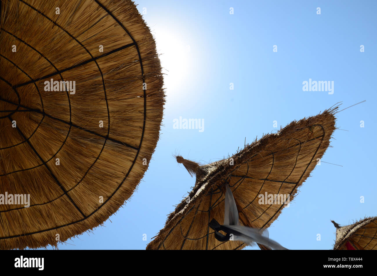 View from under the umbrella on a clear summer day. The sun shines through the straw beach umbrella - Stock Image