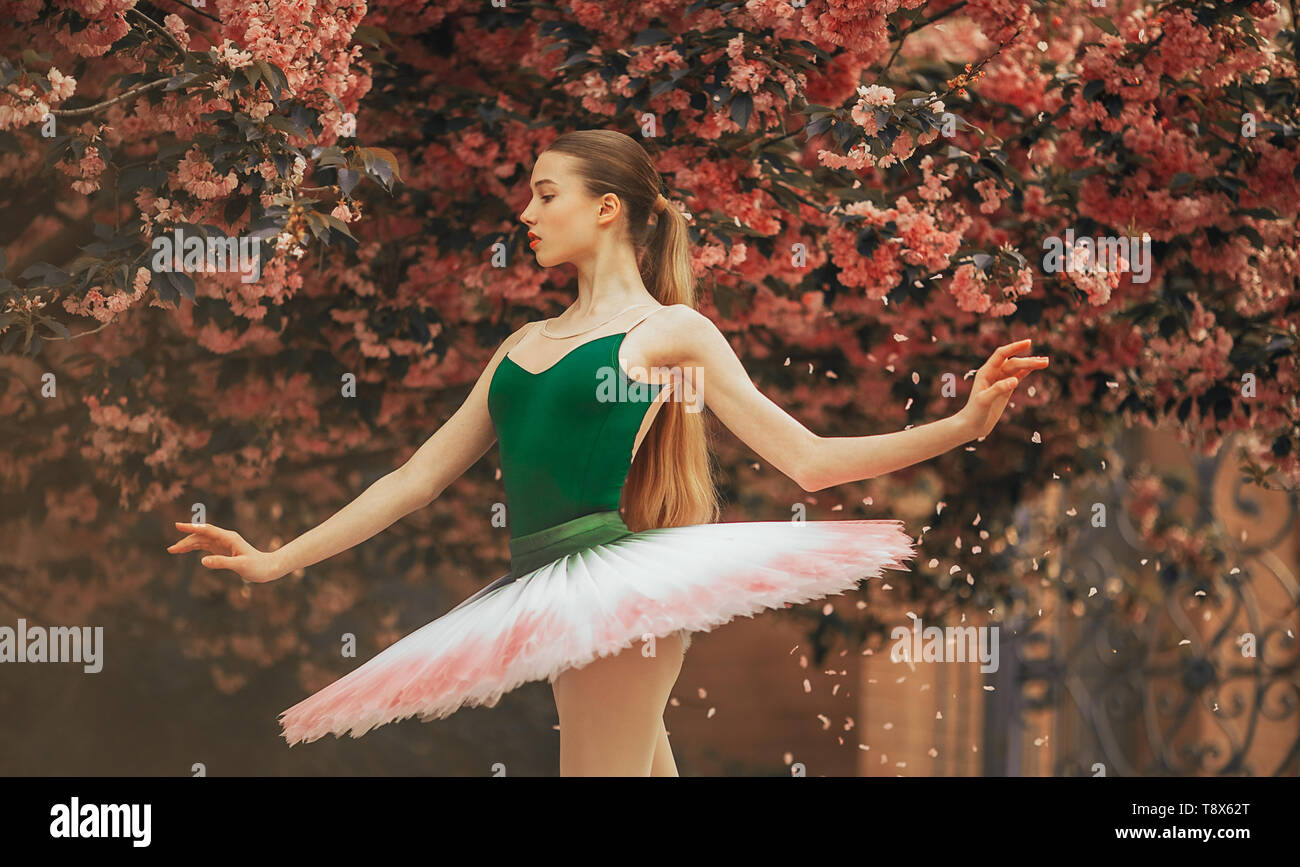 Ballerina dancing in a beautiful tutu against the background of flowering sakura trees and falling petals in the park. Closeup. - Stock Image