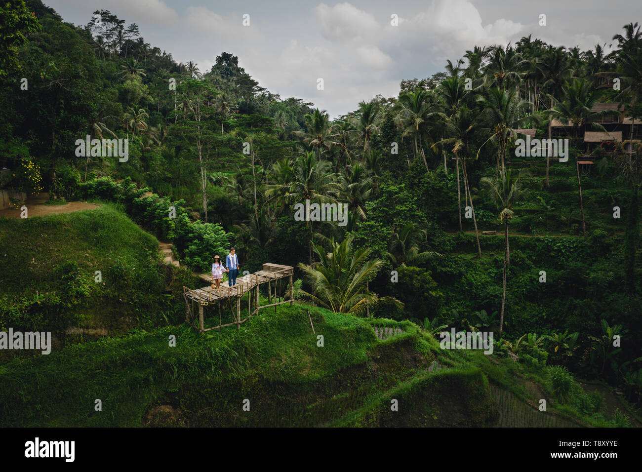 Couple standing on wooden bridge near rice terraces in Bali Indonesia. Holding hands. Romantic mood. Tropical vacation. Aerial shot. On background - Stock Image