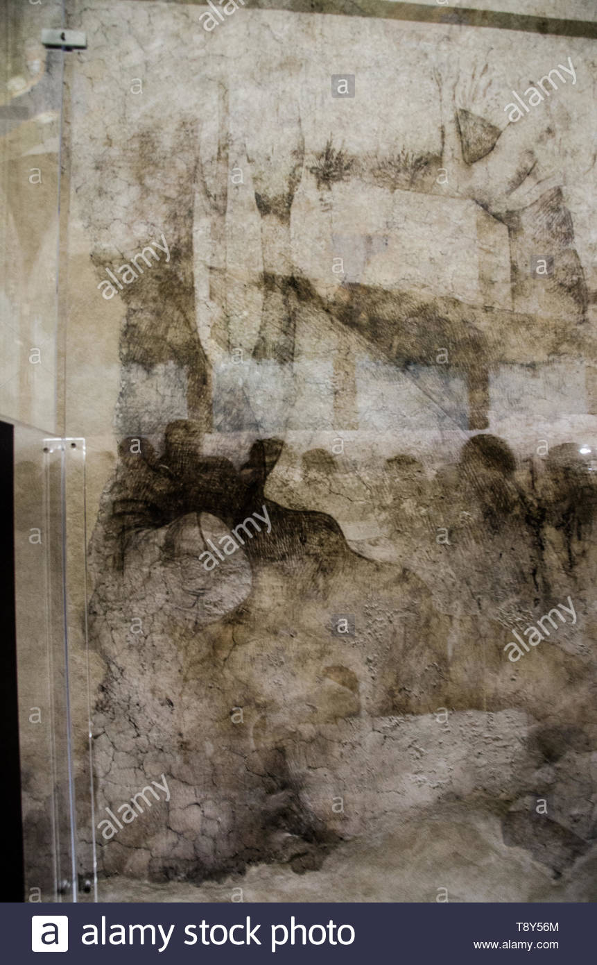 Frescos on ceiling and preparatory drawings made by Leonardo da Vinci and pupils on Sala delle Asse (still under restoration)  at Castello Sforzesco - Stock Image