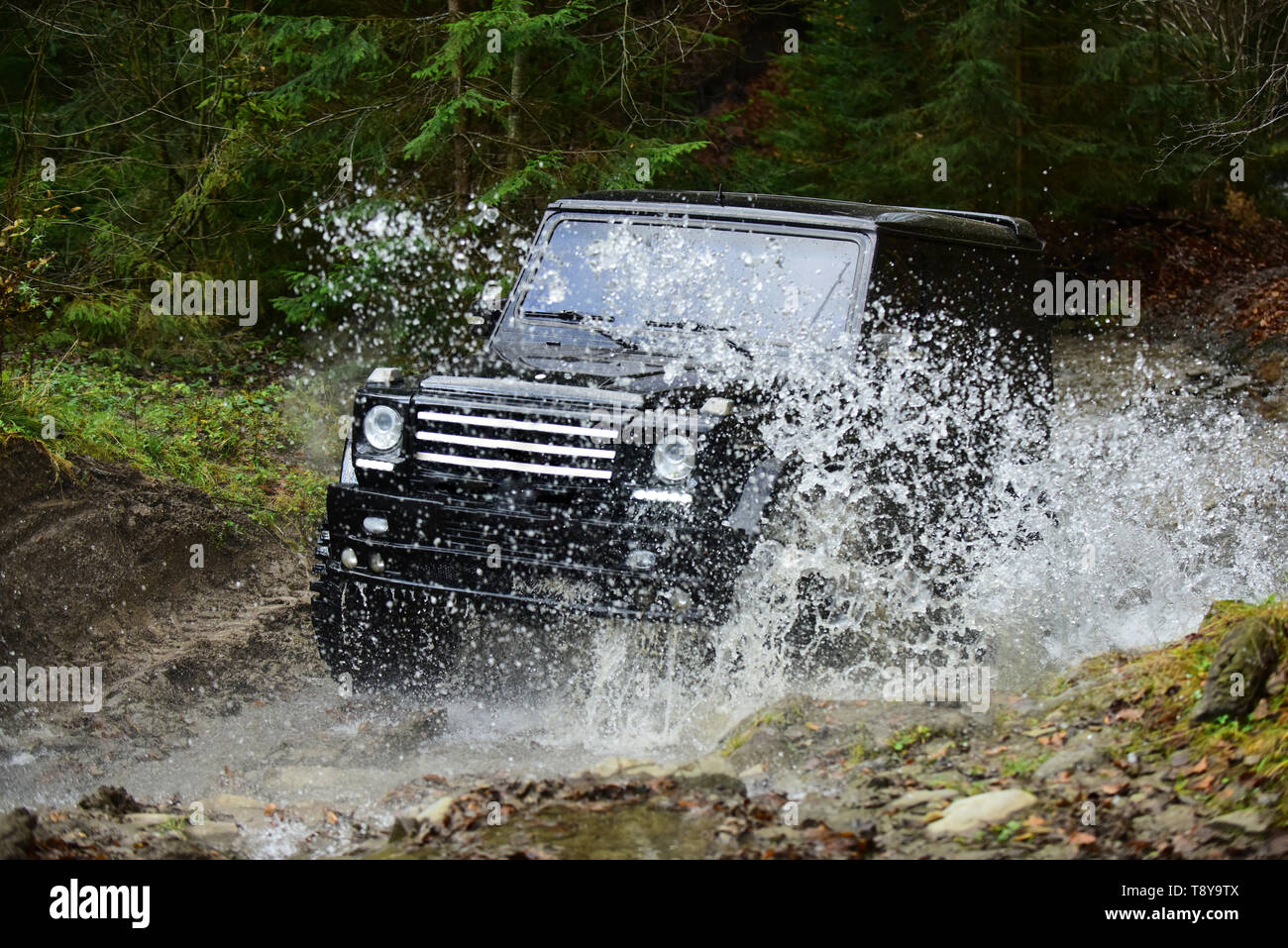 Offroad race in forest. Car racing with creek on way. Extreme driving, challenge and 4x4 vehicle concept. SUV or offroad car in black color crossing - Stock Image