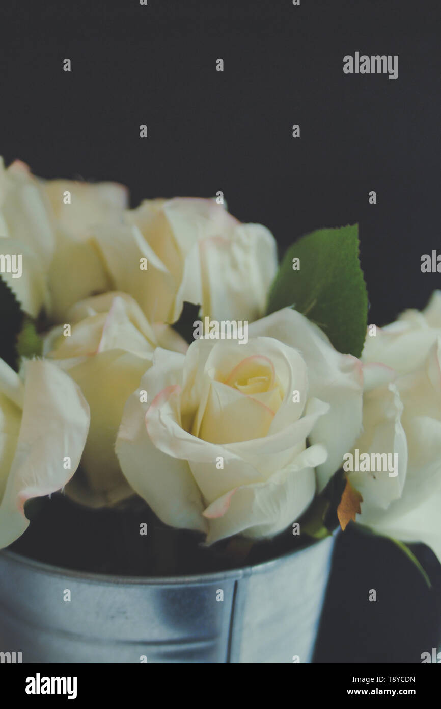 he White Rose Bouquet in metal can beautiful nature background Stock Photo
