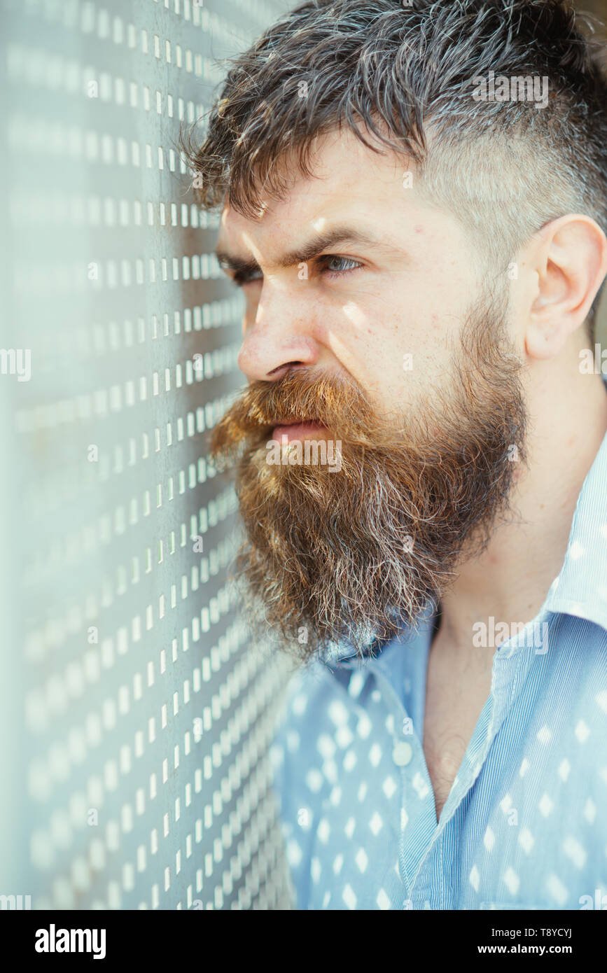 Bearded man look in perforated holes. Man with long beard and mustache on unshaven face. Fashion hipster with stylish hair and sunrays on shirt - Stock Image
