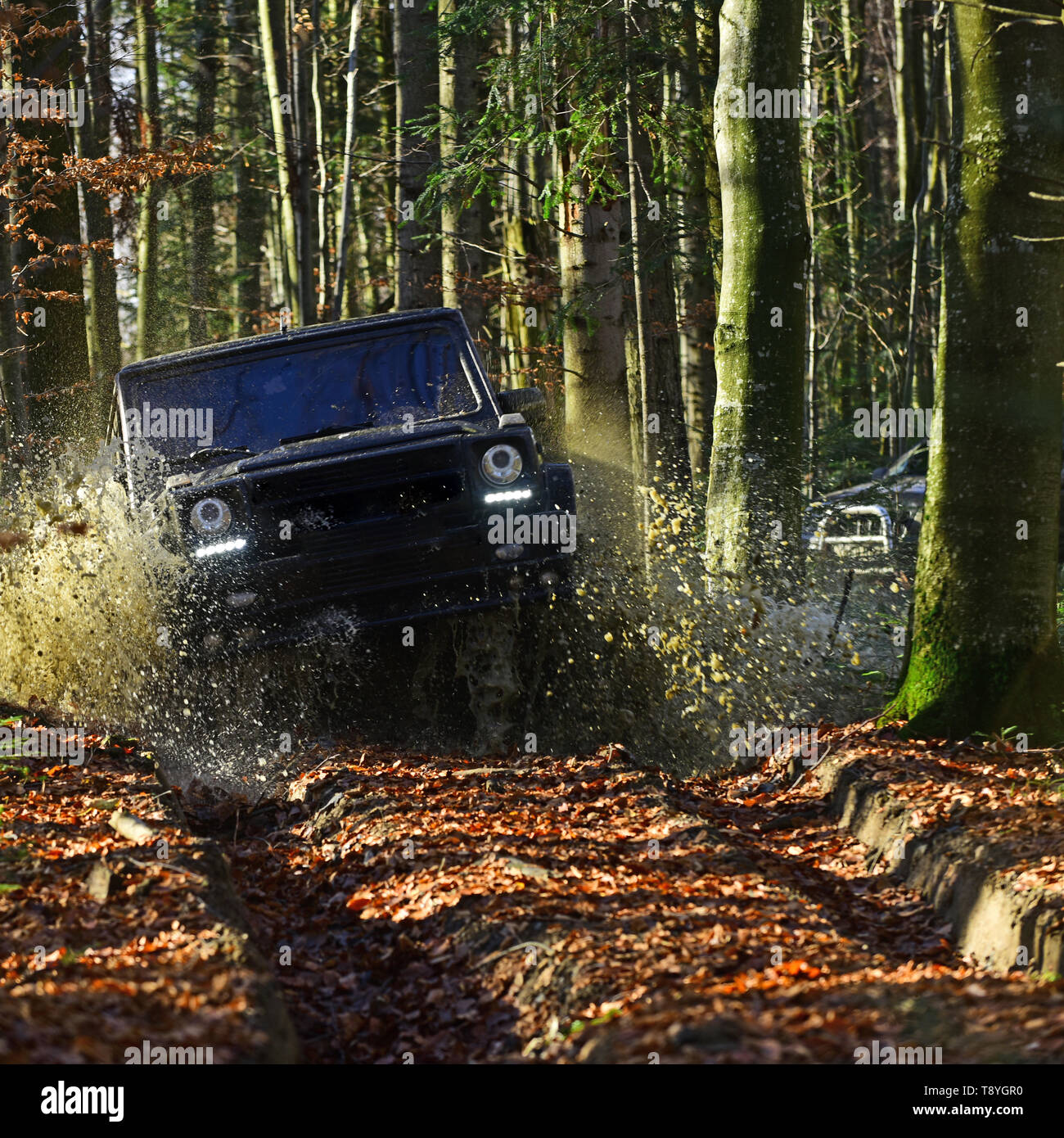 Car racing in autumn forest. SUV or offroad car on path covered with leaves crossing puddle with water splash. Offroad race on fall nature background - Stock Image