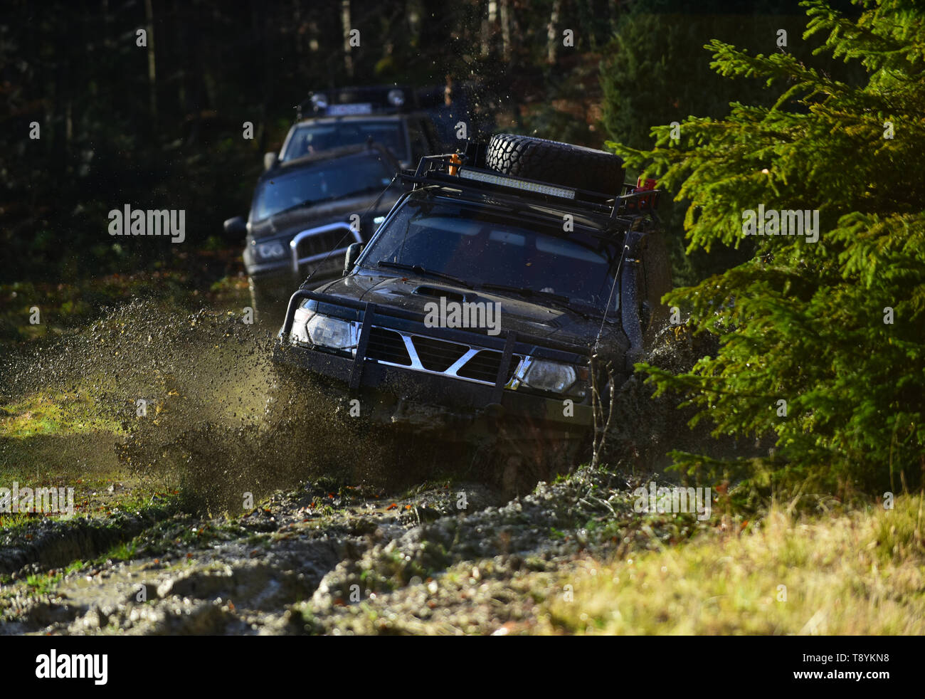 Car racing in autumn forest. Competition, energy and motorsport concept Auto racing on fall nature background. Off road vehicles or SUV overcomes - Stock Image