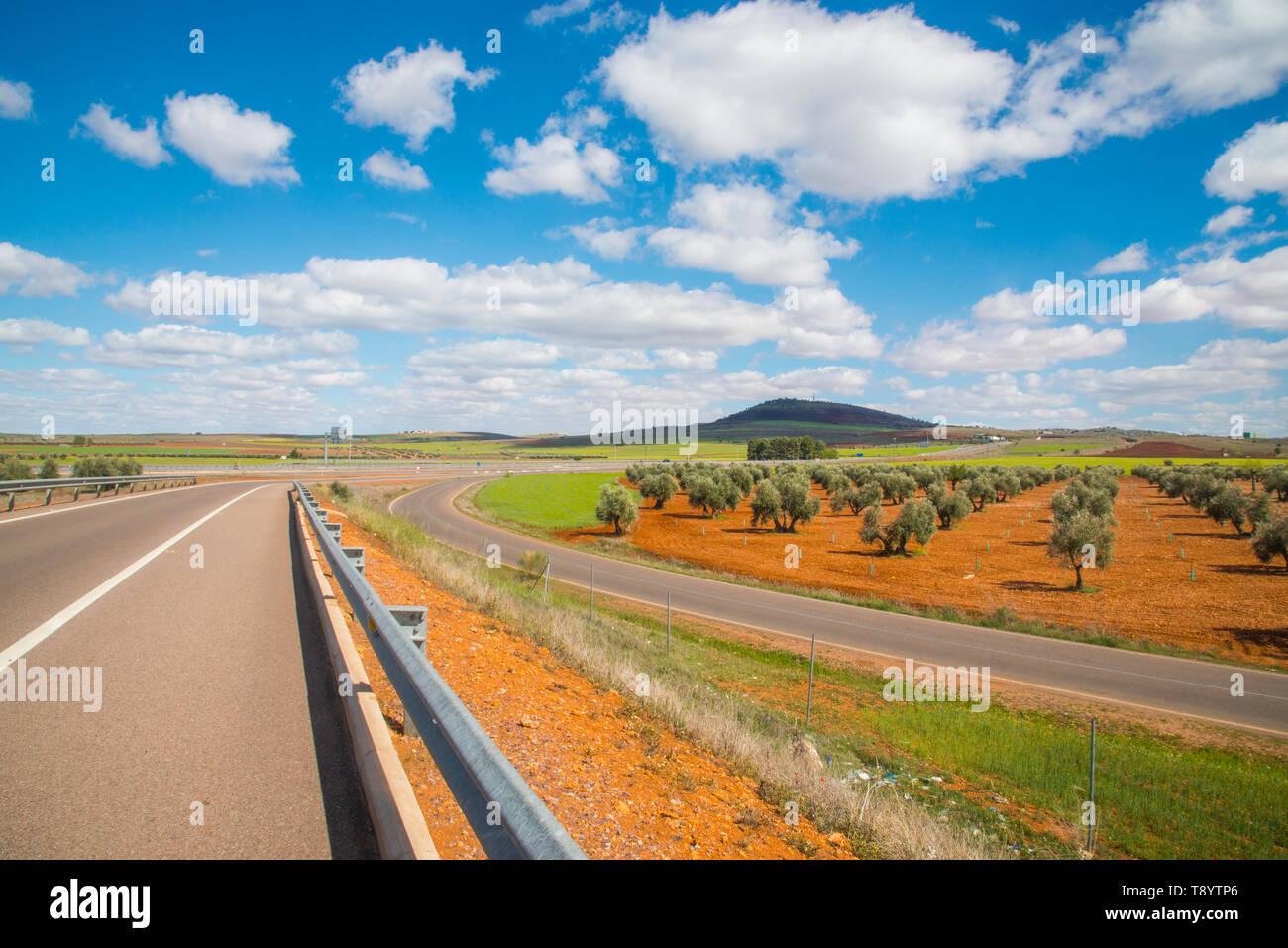 Freeway and olive grove. Almagro, Ciudad Real province, Castilla La Mancha, Spain. Stock Photo