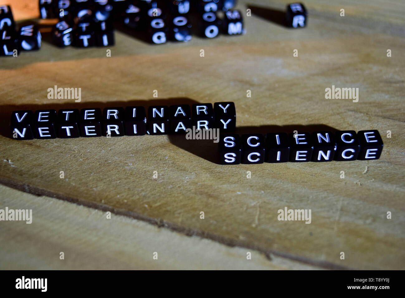 VETERINARY SCIENCE concept wooden blocks on the table. With personal development, education and motivation concept on blurred background - Stock Image